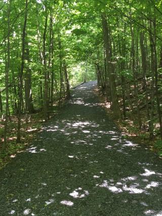 Accès interdit aux terrains protégés du boisé du Mont-Saint-Bruno