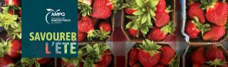 Savourer l'été avec les marchés publics de la Montérégie