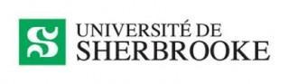 Enquête internationale menée par l'Université de Sherbrooke sur les impacts psychosociaux de la pandémie à COVID-19  La population d'ici moins affectée psychologiquement qu'aux États-Unis